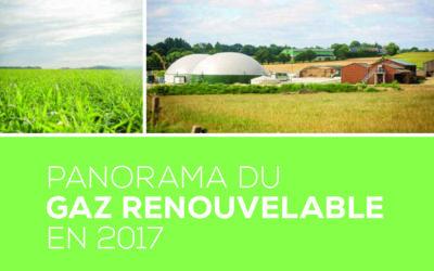Panorama du gaz renouvelable, par le SER et ses partenaires