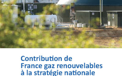 Contribution à la stratégie nationale bas carbone