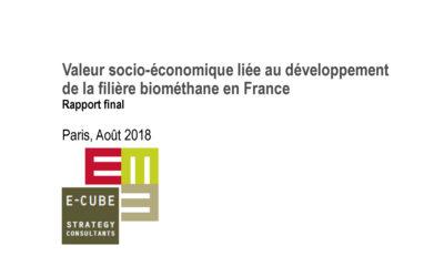 Développement du biométhane : tout savoir sur sa valeur socio-économique